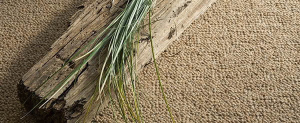 Eco-Friendly Carpeting Solutions in Chicago!