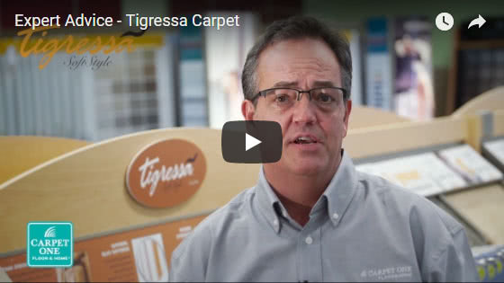 Expert Advice - Tigressa Carpet