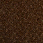 Alcova Nylon Carpet by Dixie