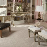 Chic Luxury Nylon Carpet by Karastan