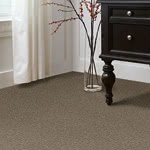 Edge of Town Nylon Carpet by Stainmaster Color Stories