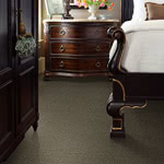Jackson's Day Nylon Carpet by Stainmaster Color Stories