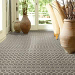 Something Always Nylon Carpet by Stainmaster Color Stories