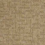 Arietta Nylon Carpet by Tuftex