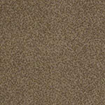 Azari Nylon Carpet by Tuftex