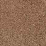 Orchard Vista Plus Polyester Carpet by Innovia