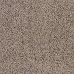 Imagine Plus Polyester Carpet by Resista SoftStyle