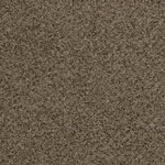 This Time Polyester Carpet by Resista SoftStyle