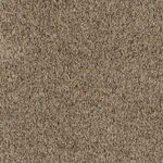 Turnout Tweed Polyester Carpet by Resista SoftStyle