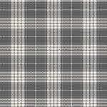 Tartan Synthetic Carpet by Kane Carpet