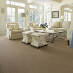 Distinctive Taste Synthetic Carpet by Karastan