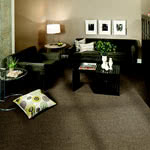 Modern Always Synthetic Carpet by Karastan